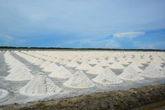 Salt piles in salt farm at Petchaburi, Thailand. Royalty Free Stock Photo