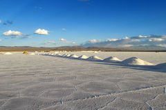 Salt piles on salt lake surface Royalty Free Stock Photography