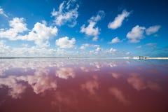 Salt pink lagoon in Las Coloradas, Yucatan, Mexico Stock Images