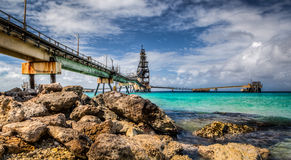 Salt pir, Bonaire Royaltyfri Bild