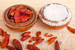 Salt and Piri Piri Stock Photo
