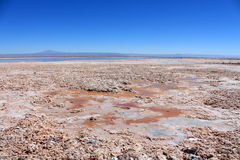 Salt plains with lake in Chile Stock Photos