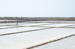 Salt plantations, Vietnam Stock Images