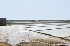 Salt plantations, Vietnam Royalty Free Stock Image