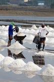 Salt plockning - Thailand Arkivfoton