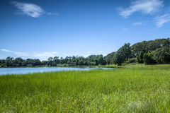 Salt Pond Stock Photography