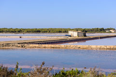 Salt pond Stock Image