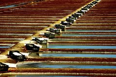 Salt ponds Royalty Free Stock Photo