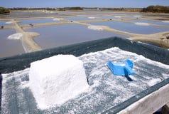 Salt pools Royalty Free Stock Photo