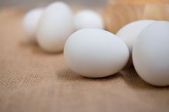 Salt preservation white duck egg for food Stock Photography
