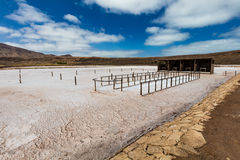 Salt production factory. Dry salt on a bright day Stock Photography