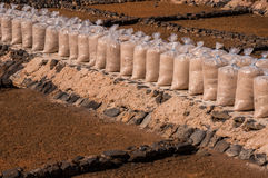 Salt Production in Fuerteventura, Canary Islands Royalty Free Stock Images