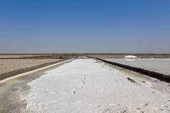 Salt production in gujarat Stock Photography