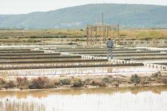 Salt production Stock Photography
