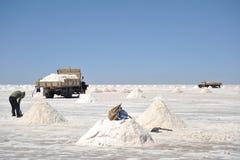 Salt produktion på Uyuni de salta lägenheterna Royaltyfri Bild