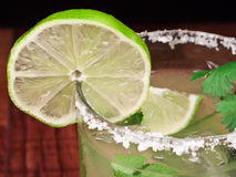 Salt Rim Margarita Stock Image