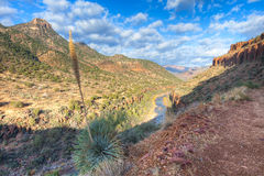 Salt River Canyon Royalty Free Stock Photo