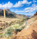 Salt River Canyon Stock Photography
