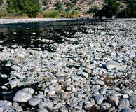 Rock River Bed. Salt river Dry and rocky river bed Royalty Free Stock Photography