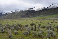 Salt River Strecke entlang U S Weg 89 in West-Wyoming Lizenzfreies Stockfoto
