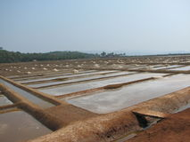 Salt salt extraction food industry India. Baths with salt salt extraction food industry India, Karnataka, Gokarna, March, 2017 royalty free stock image