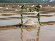 Salt salt extraction food industry India. Baths with salt salt extraction food industry India, Karnataka, Gokarna, March, 2017 royalty free stock image