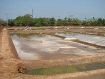 Salt salt extraction food industry India. Baths with salt salt extraction food industry India, Karnataka, Gokarna, March, 2017 stock image