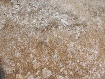 Salt salt extraction food industry India. Texture of crystals salt salt extraction food industry India, Karnataka, Gokarna, March, 2017 stock photo