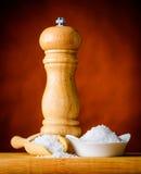 Salt and Salt-mill Royalty Free Stock Photo