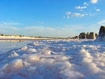 Salt in the salty sea in Sivash Royalty Free Stock Photography
