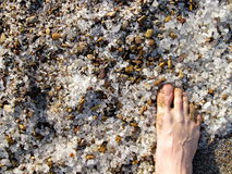 Salt sand för dött hav Arkivfoton