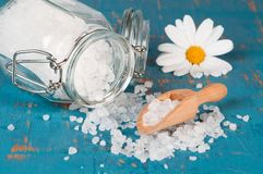Salt With Scoop Royalty Free Stock Images