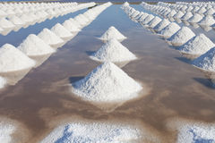 Salt in sea salt farm ready for harvest, Thailand. Royalty Free Stock Images