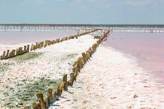 Salt sea water evaporation ponds with pink plankton colour Stock Image
