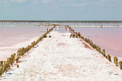 Salt sea water evaporation ponds with pink plankton colour Royalty Free Stock Images