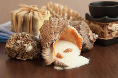 Salt in the seashell bath accessories Stock Images