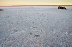 Salt See auf Sonnenaufgang Stockfotografie