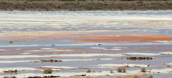 Salt See mit Wasser- und Salzablagerung Lizenzfreie Stockbilder