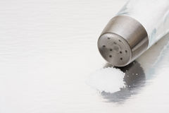 Salt shaker Royalty Free Stock Photography