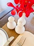 salt shakers för peppar royaltyfri foto