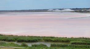 Salt sjö nära Aigues-Mortes Royaltyfria Bilder