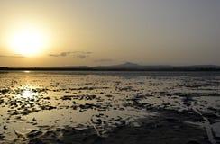Salt sjö under solnedgång Royaltyfria Bilder