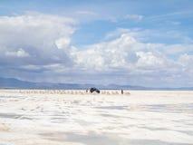 Salt sjö Uyuni i Bolivia Arkivbild