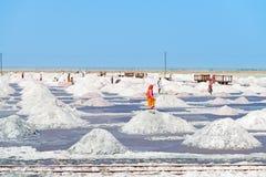 Salt som samlar i den salt lantgården, Indien Arkivfoto