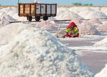 Salt som samlar i den salt lantgården, Indien Fotografering för Bildbyråer