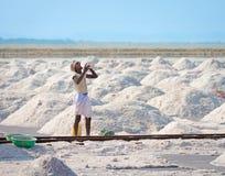 Salt som samlar i den salt lantgården, Indien Arkivfoton