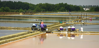 Salt source, Thailand. Royalty Free Stock Photo