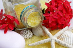Salt and spa items. Royalty Free Stock Photography