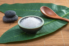 Salt, spoon, stone, on green leaf for health spa material Royalty Free Stock Photo