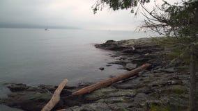 Salt Spring Island Shore, BC. 4K UHD stock footage
